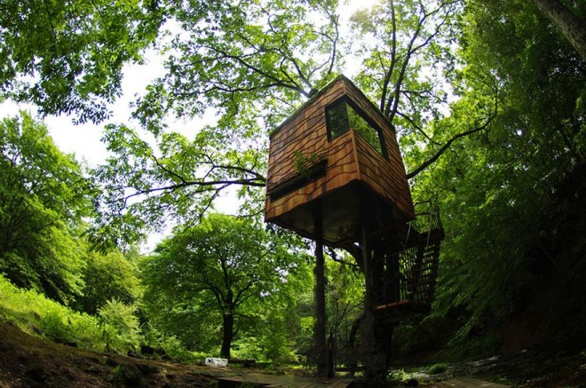 tree house simple