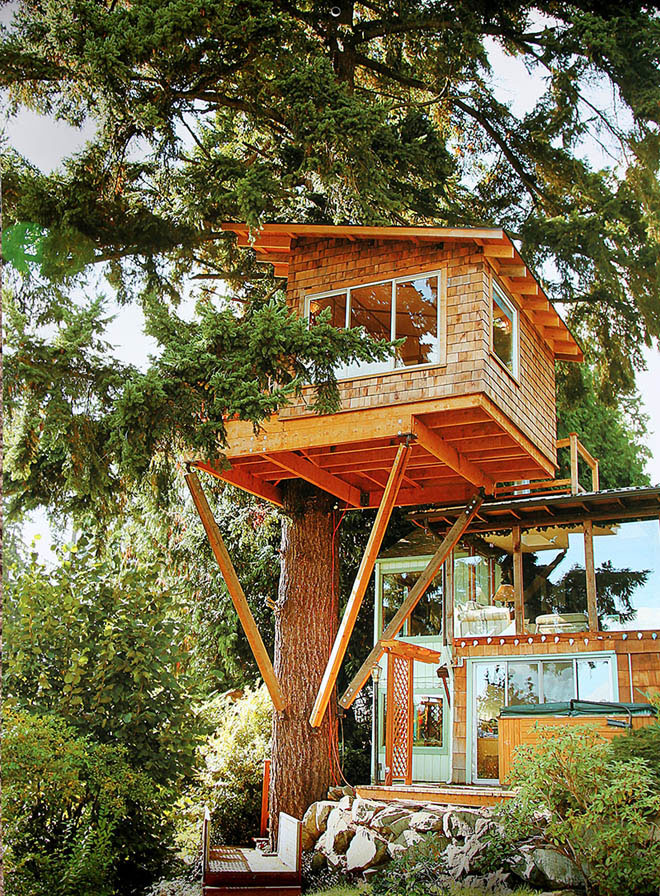 tree house cool