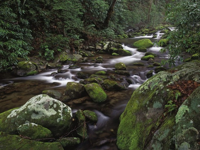 most beautiful places in america great smoky mountains national