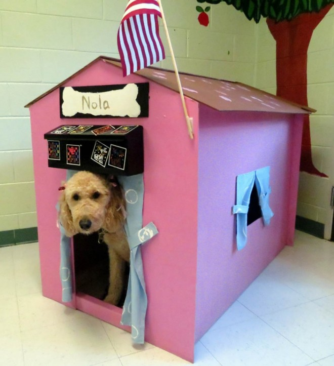 dog house plans nola