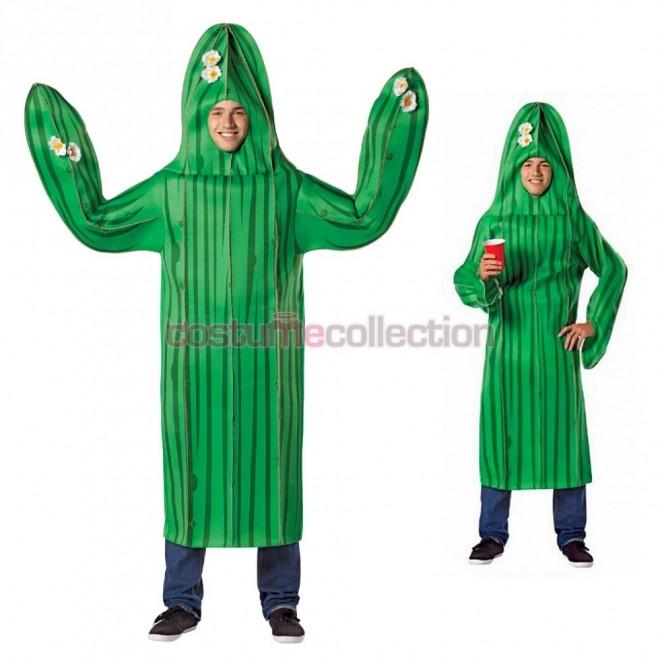funny costumes cactus