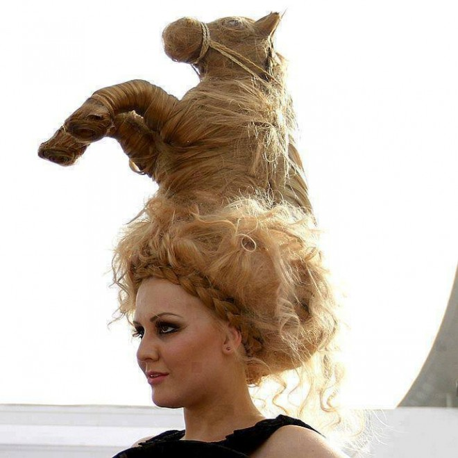 funny hairstyles horse