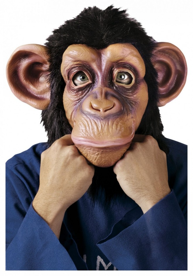 funny mask chimp