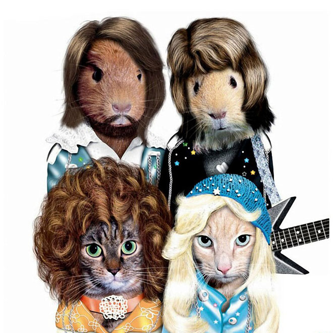ABBA - Dog Disguisefamous person faces celebrity animal funny