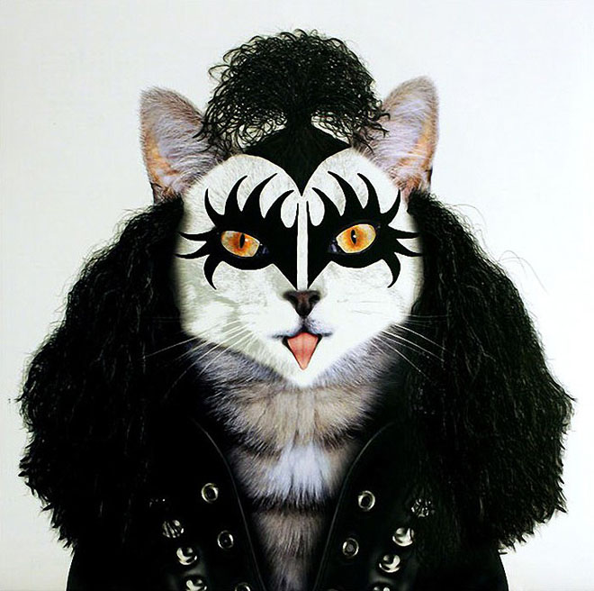 Gene Simmons - Dog Disguisefamous person faces celebrity animal funny