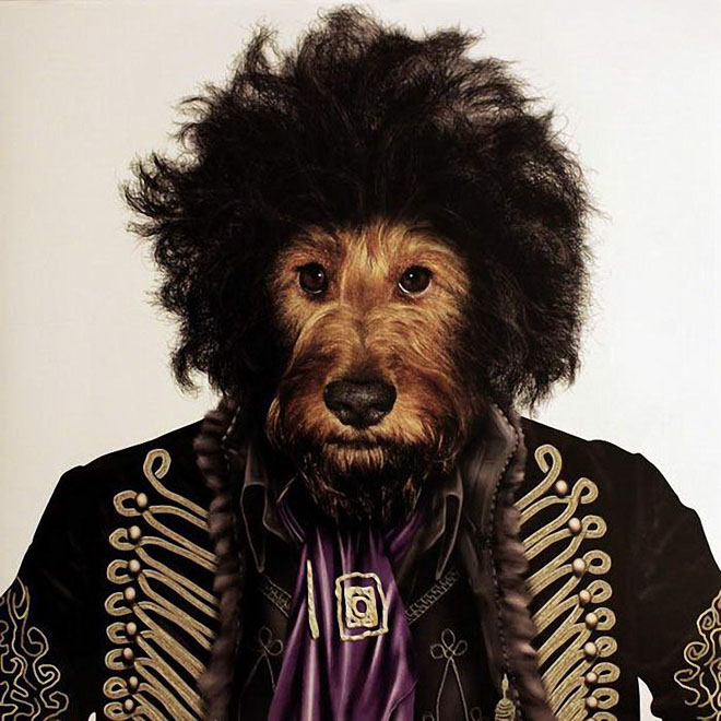 Jimi Hendrix - Dog Disguisefamous person faces celebrity animal funny