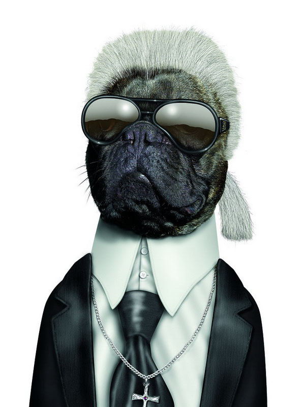 Karl Lagerfeld - Dog Disguisefamous person faces celebrity animal funny