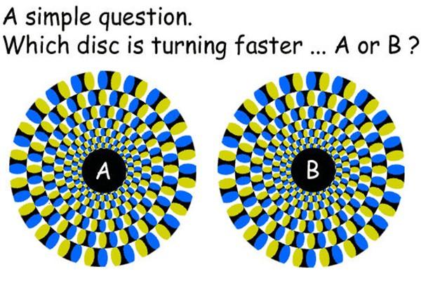 Optical Illusion Images Gif Funny (75)