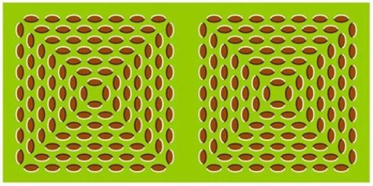 Optical Illusion Images Gif Funny (78)