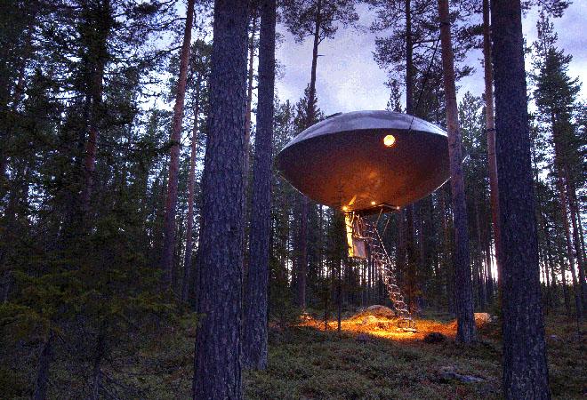 tree house modern