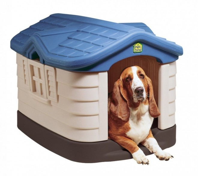 dog house plans cute