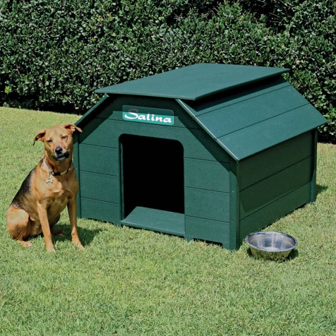 dog house plans green