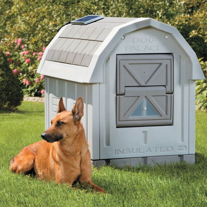dog house plans insulated