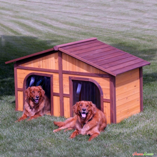 dog house plans twins