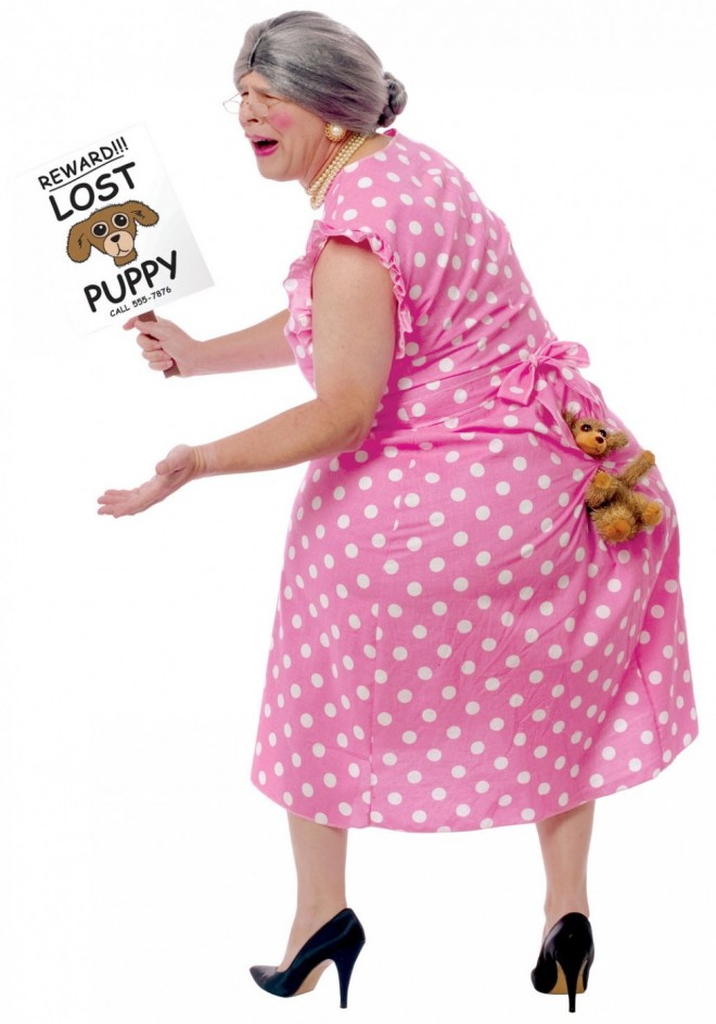 funny costumes lost dog