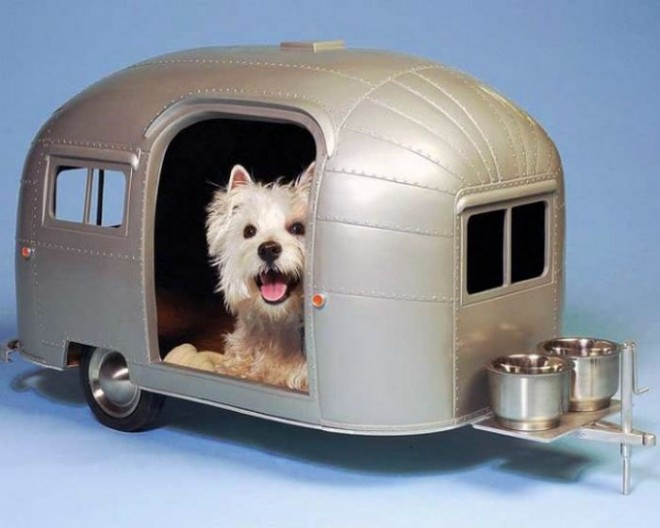 funny gadgets dog house