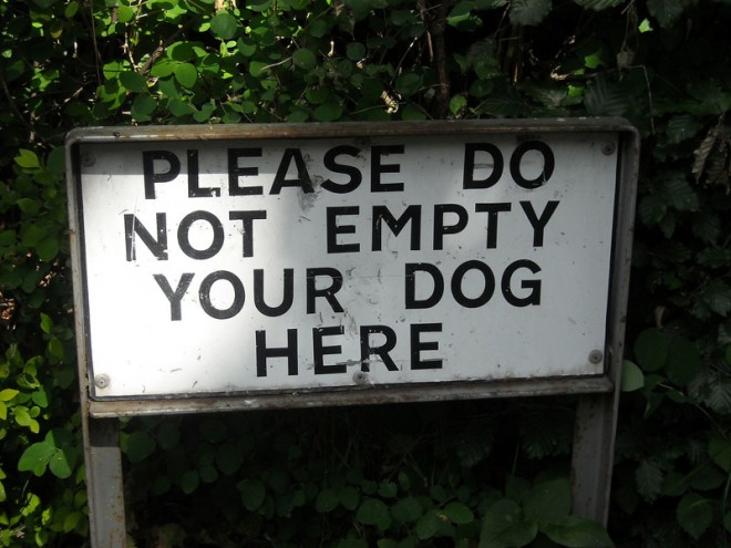 funny signs dog