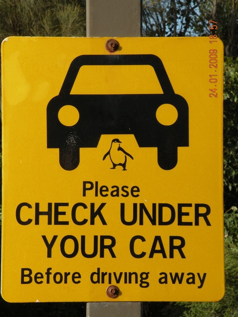 funny signs under car