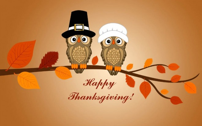 funny thanksgiving pictures owl