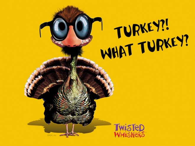 funny thanksgiving pictures turkey