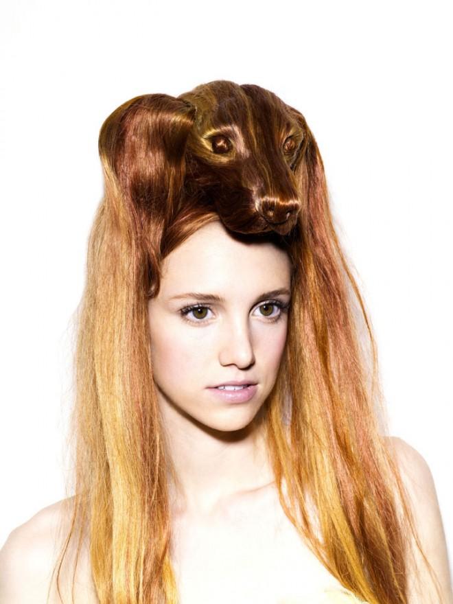 funny wigs dog