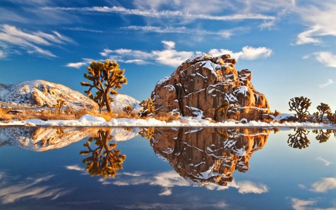 places to visit in california joshua tree national park