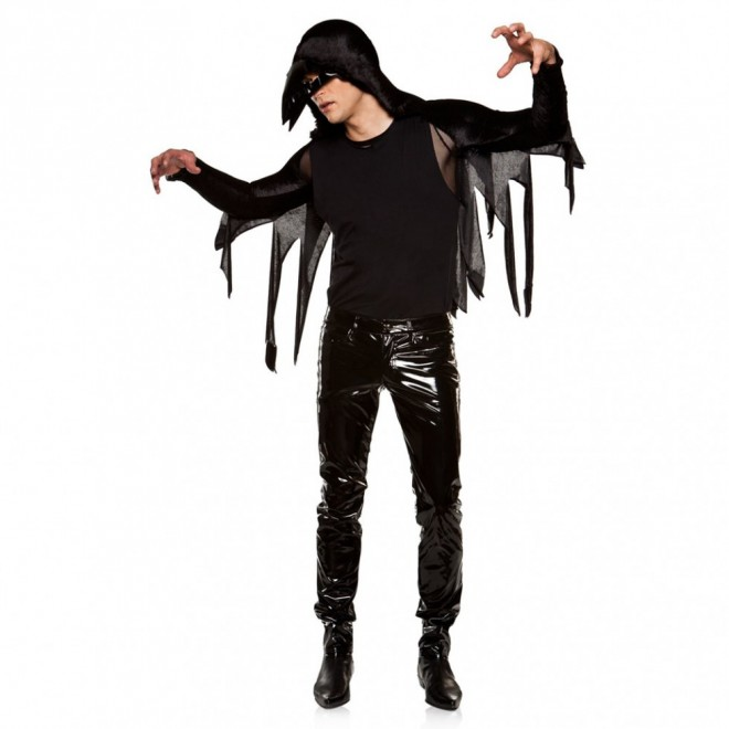 funny halloween costumes raven