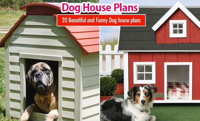 dog house plans - Beautiful Dog Houses