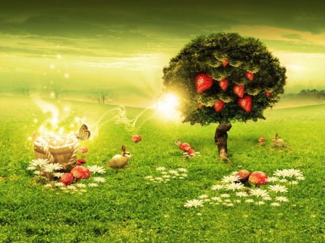 strawberry dream surrealism photography