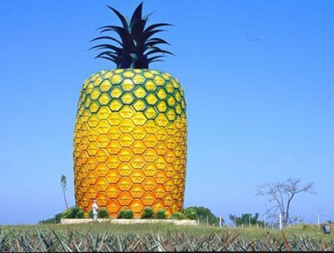 world biggest pineapple novelty architecture