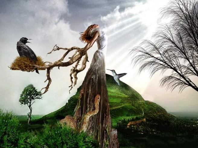 lady tree surrealism photography