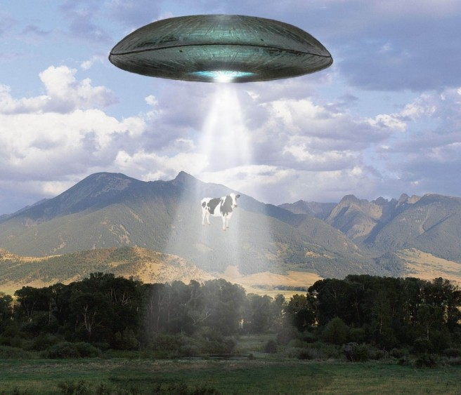funny ufo pictures