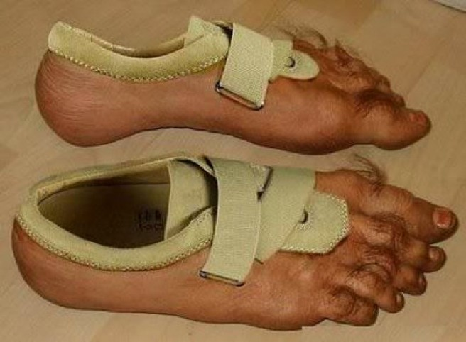 foot funny shoe pictures
