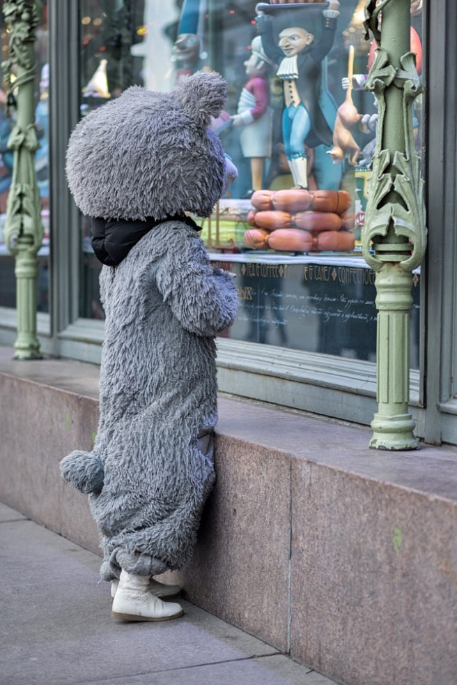 funny candid photography hungry bear yakov volkind