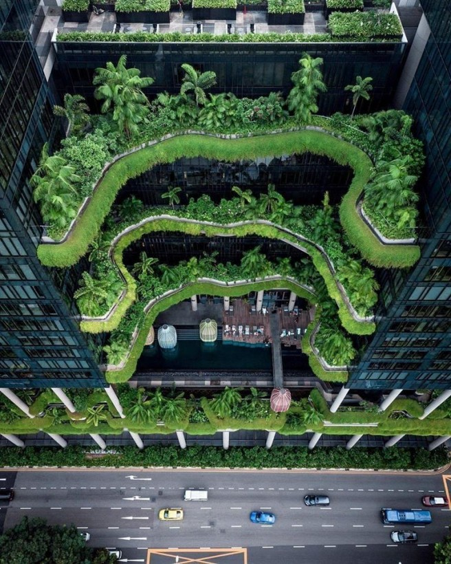 amazing picture architecture design terrace garden singapore