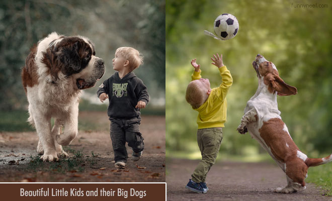 cute little kids with big dogs photography