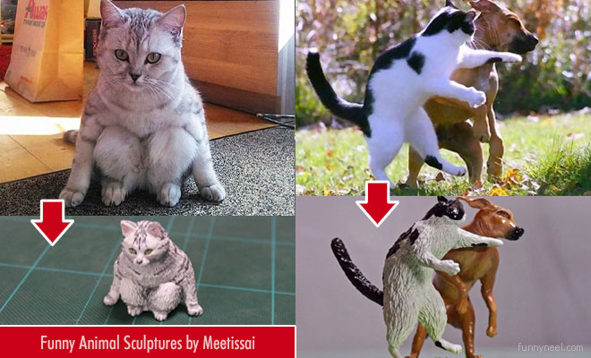 funny animal meme sculptures