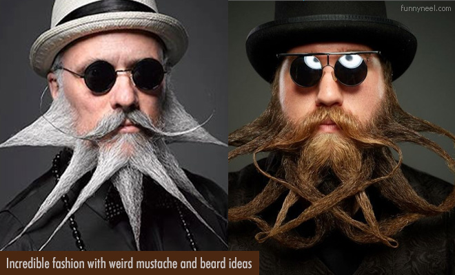 funny beard and mustache
