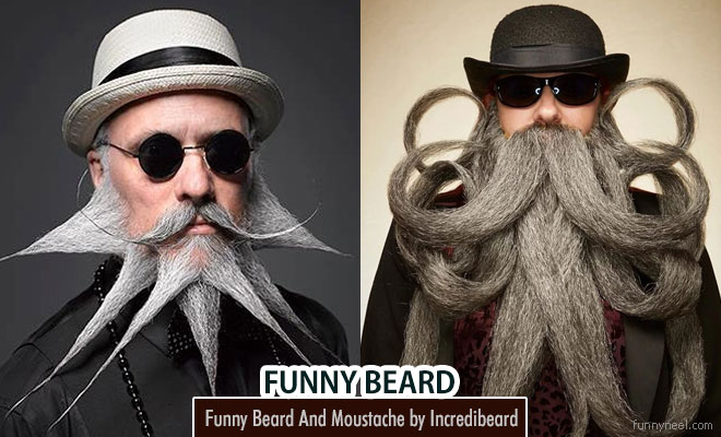 funny beard and moustache