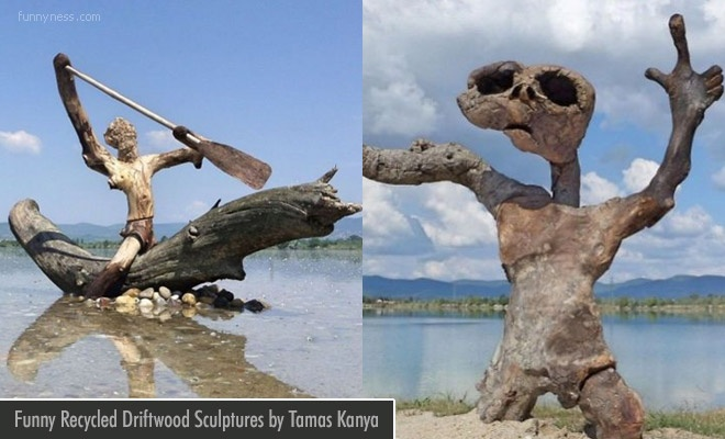 Funny Driftwood Sculptures
