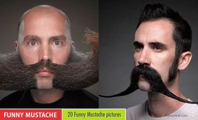 Funny Mustache