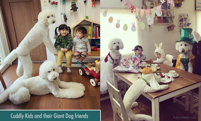 cuddly kids with giant dogs