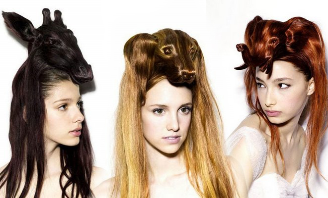blogs/creative animal hair style collections