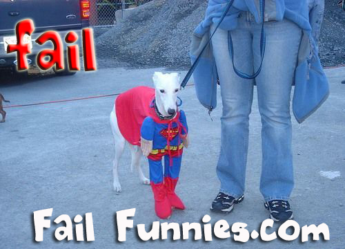 funny super dog fail