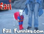 funny-super-dog-fail