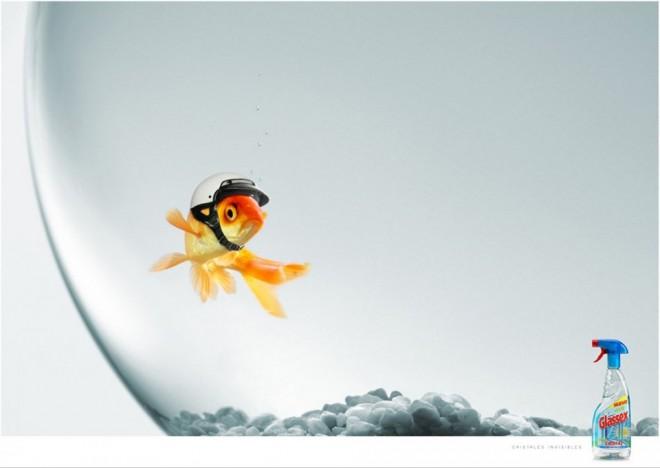 creative ad for glassex