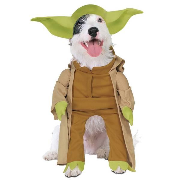 dog funny dog costume