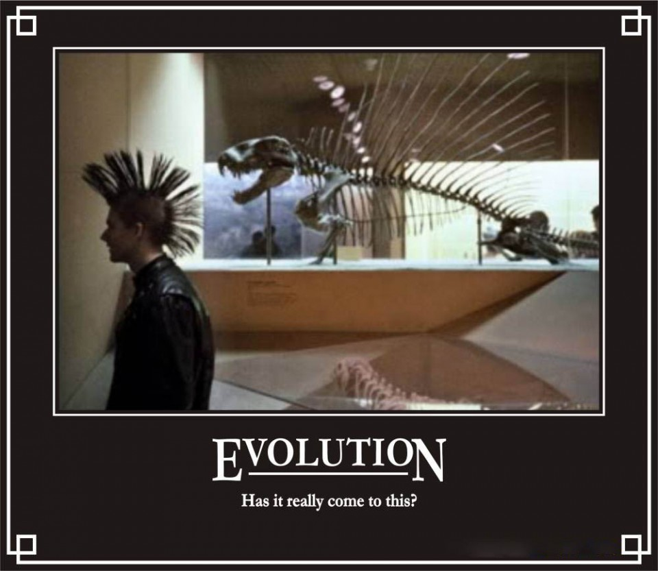 evolution funny poster
