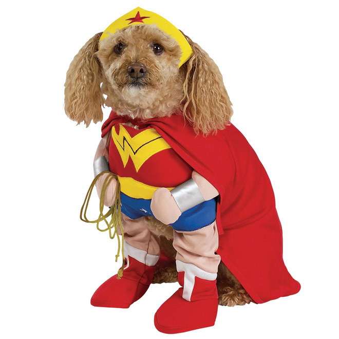 superhero funny dog costume