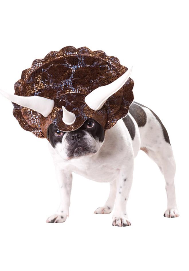 unicorn funny dog costume